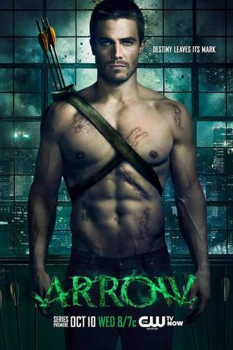 Download Arrow Season 1 TV Series Subtitles