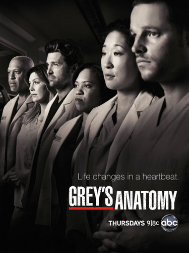 GREY'S ANATOMY - 9ª TEMPORADA