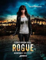 Rogue DirecTV 2013 season 1 poster