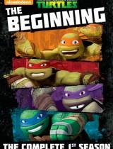 Teenage Mutant Ninja Turtles poster Nickelodeon season 1 2012