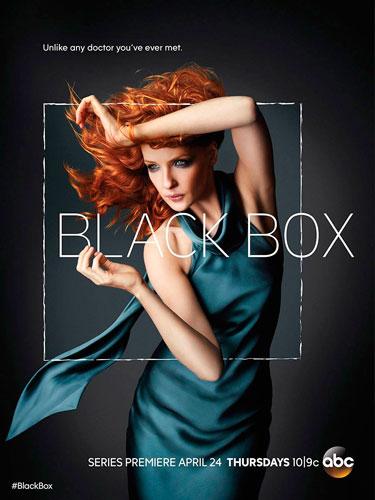 Black-Box-ABC-season-1-2014-poster.jpg