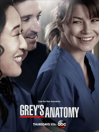 Greys Anatomy season 10 ABC poster 2013