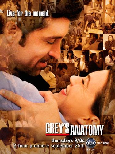 Greys Anatomy season 5 ABC poster 2008