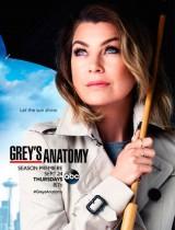 Greys-Anatomy-poster-ABC-season-12-2015
