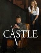 Castle (season 8)